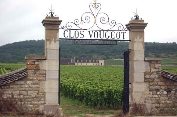 Clos-Vougeot-vineyards